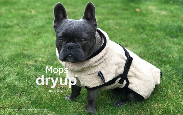 Action Factory - Dryup Cape Mops & Co Hundebademantel