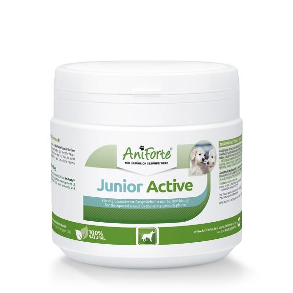 AniForte® Junior Active Pulver